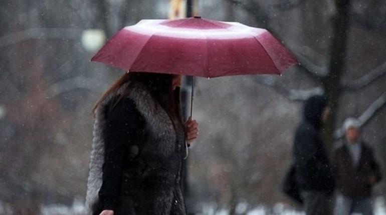 Зима в Ленобласти начнется с 13-градусного мороза