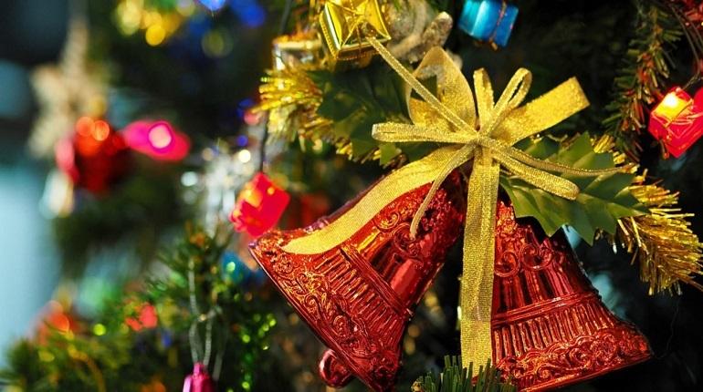Эксперты Роскачества рассказали, как жителям Петербурга выбрать елку к предстоящему Новому году, не навредив природе. При этом экологи рекомендуют отдавать предпочтение живым елям.
