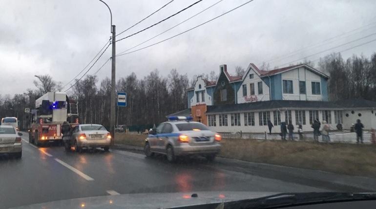 Пожар в ресторане Петергофа ликвидируют силами 25 человек личного состава и 6 единиц техники. Об этом сообщили в ГУ МЧС по Петербургу 7 декабря.