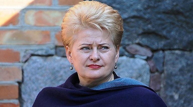 После инцидента в Черном море Вильнюс ввел санкции против России. Об этом заявила президент Литвы Даля Грибаускайте во время встречи с президентом Украины Петром Порошенко.
