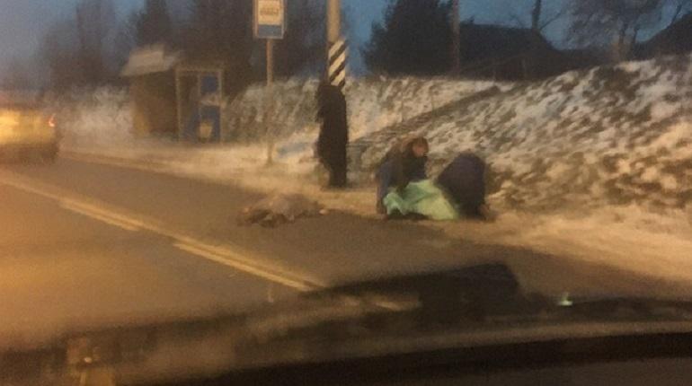 В Гатчинском районе Ленинградской области произошло смертельное дорожно-транспортное происшествие. Об этом сообщают свидетели аварии в социальной сети
