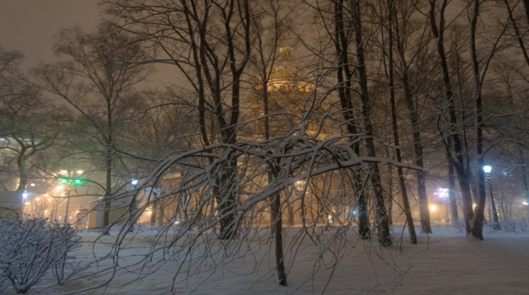 В Петербурге начался снегопад, который продлится неделю