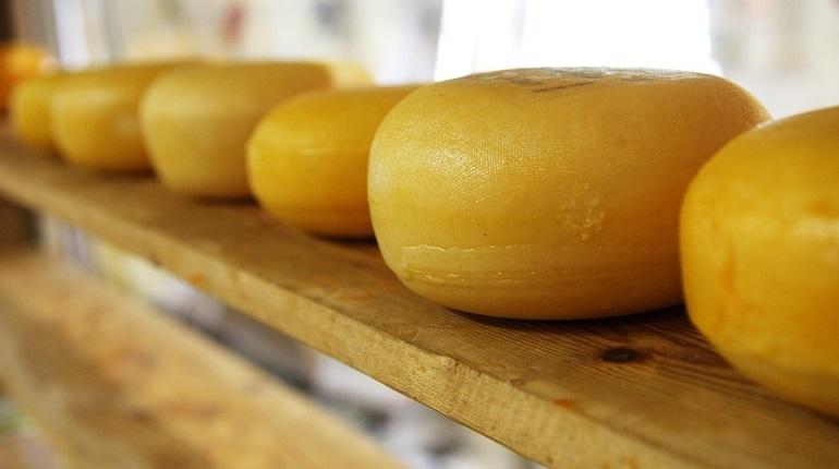 Россиянин вез из Финляндии 33 килограмма сыра, спрятав его в колесе