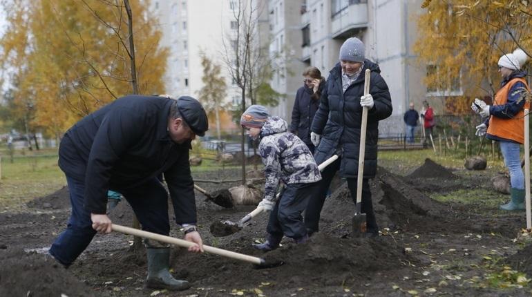 Комитет по благоустройству выбрал подрядчиков, которые займутся содержанием и озеленением территорий в Петербурге. Общая стоимость нескольких контрактов составляет почти 2,5 млрд рублей.