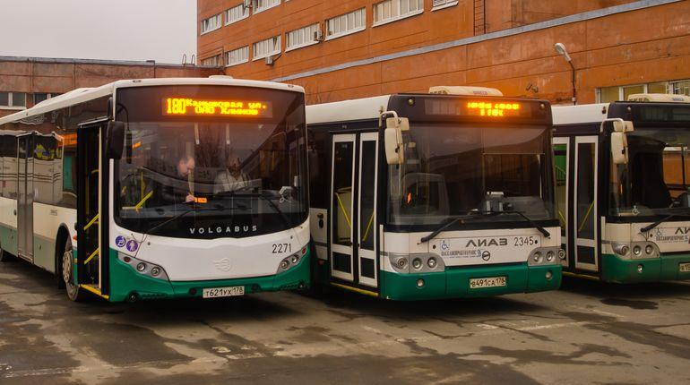 В Сланцах автобус переехал пешехода
