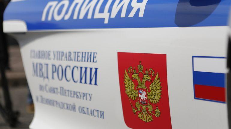 В Петербурге проверяют информацию о похищении 11-летнего мальчика