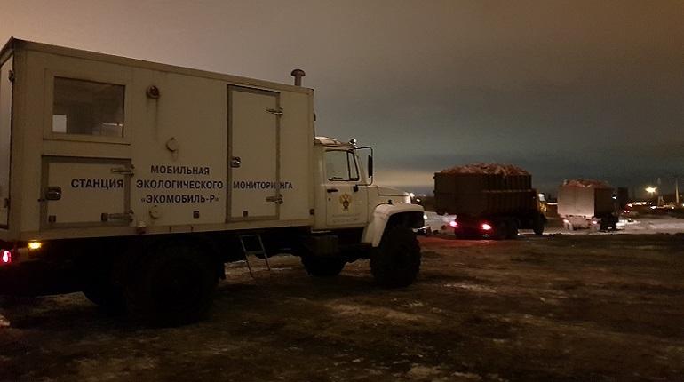 Инспекторы комитета Петербурга по природопользовнию и экономическая полиция объединились с казаками хутора