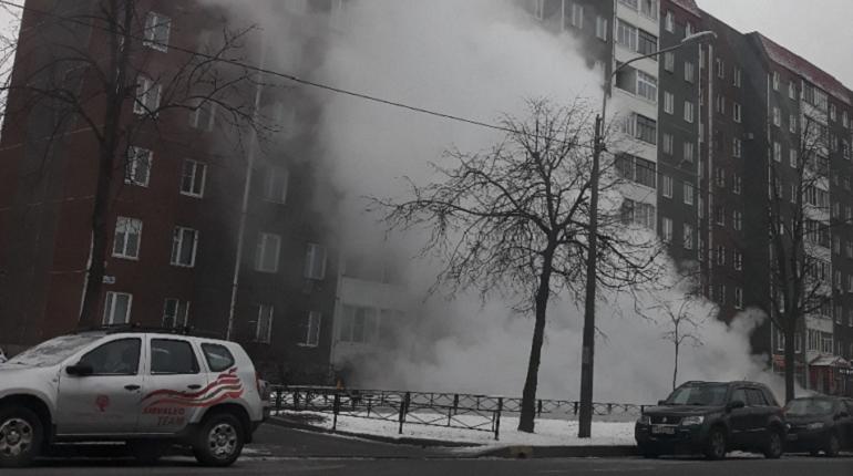 Улица Солдата Корзуна превратилась в хаммам из-за прорыва трубы