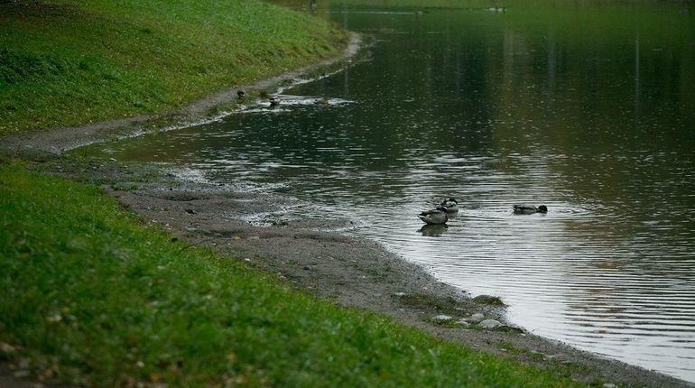 У Серебряного пруда есть шанс не пересохнуть