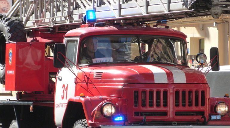 Восемь спасателей тушили бытовку в Колпино