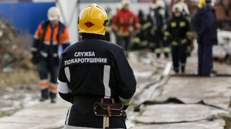 Десять спасателей тушили бытовку в Шушарах