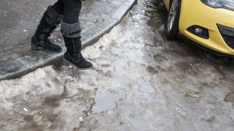 В Петербурге «горячие» линии по уборке будут работать все праздники