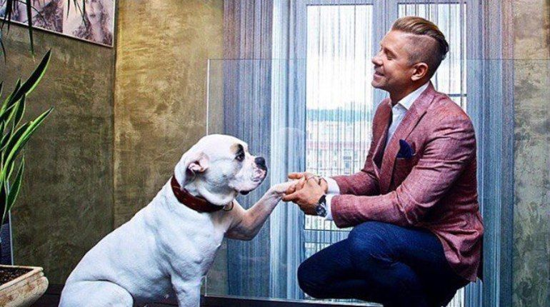 Собаки — звезды Instagram