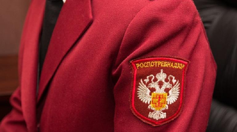 Мошенники разводят петербургских коммерсантов под видом Роспотребнадзора