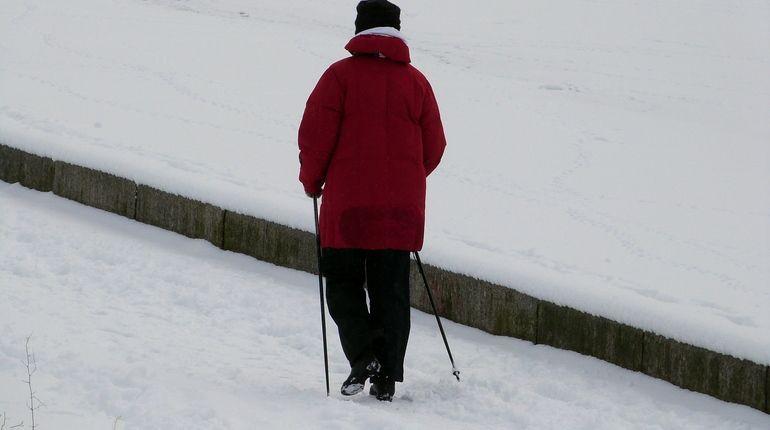 Лыжные стрелы умчат в лес пенсионеров